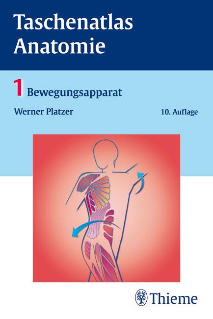 Taschenatlas Anatomie - Bewegungsapparat - Anatomie - MedForum ...