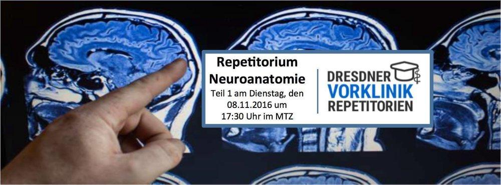 Repetitorium Neuroanatomie – Bild Facebook – Dresdner Vorklinik Repetitorium.jpg